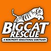 Big Cat Rescue logo