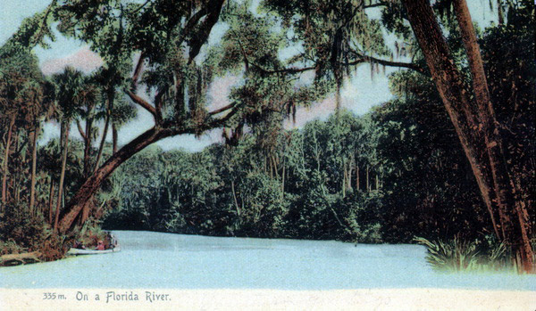 Postcard - On a Florida River